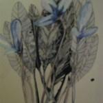Flowerssilizaz